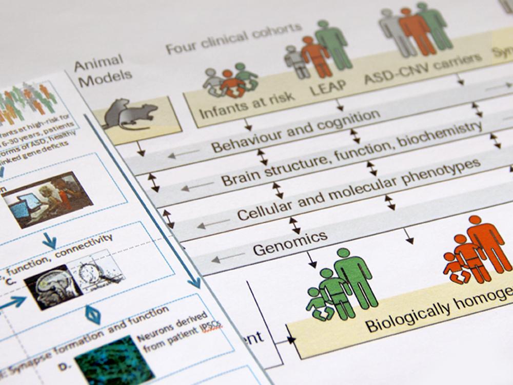 avant/après : illustration scientifique Neurosience, présentation PowerPoint +publication imprimée