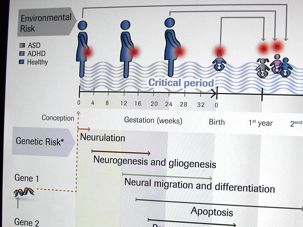 Wissenschaftliche Illustration Neurosience, Lancet Psychiatry